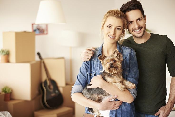 שיפור איכות החיים באמצעות כלבים
